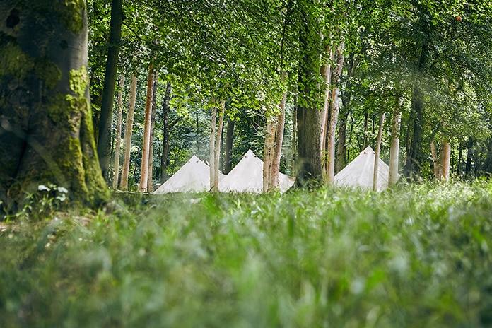 Safari Style Tents