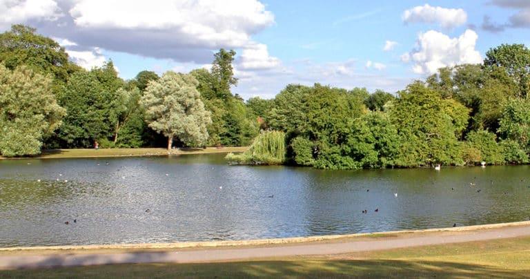 Lake,in,verulamium,park,,st.,albans